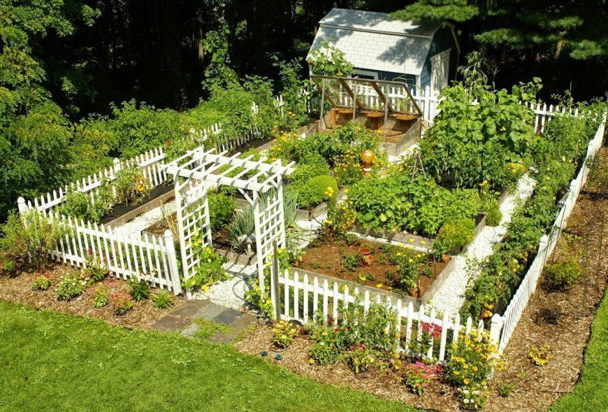 Планировка огорода на дачном участке: готовые схемы для практичной и эффективной планировки своими руками