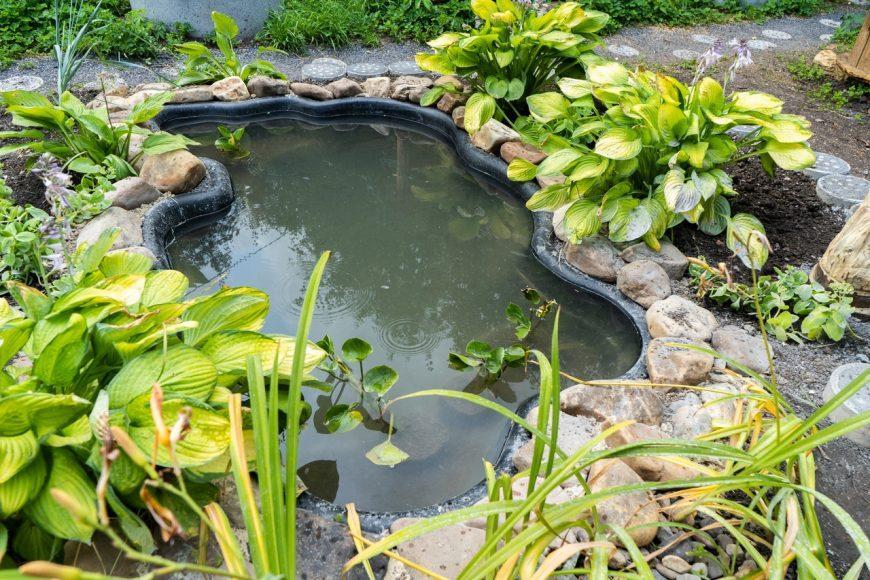 Пруд на даче — подробная инструкция, как сделать красивый и функциональный пруд своими руками (115 фото идей)